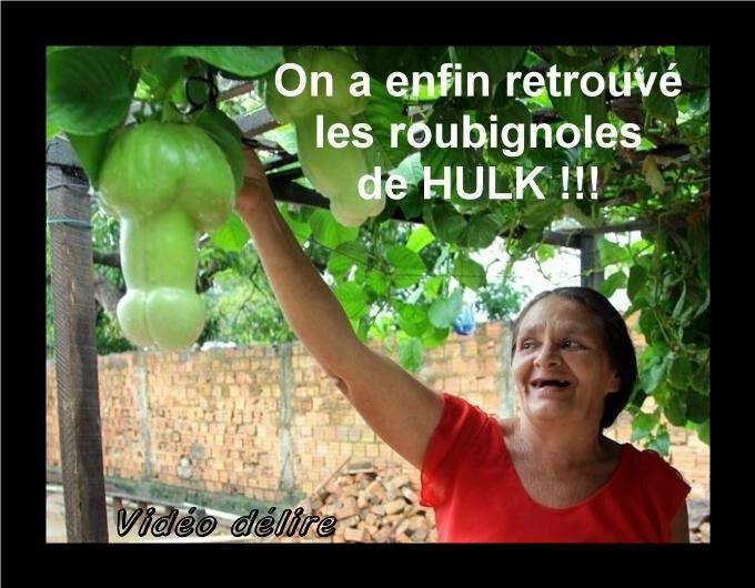 HUMOUR - blagues - Page 12 347880Hulk