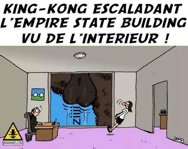 HUMOUR - blagues - Page 3 355218Kingkong