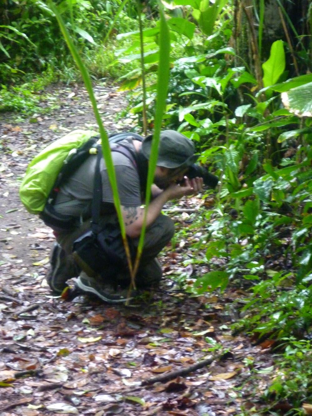 15 jours dans la jungle du Costa Rica 358371johannesr