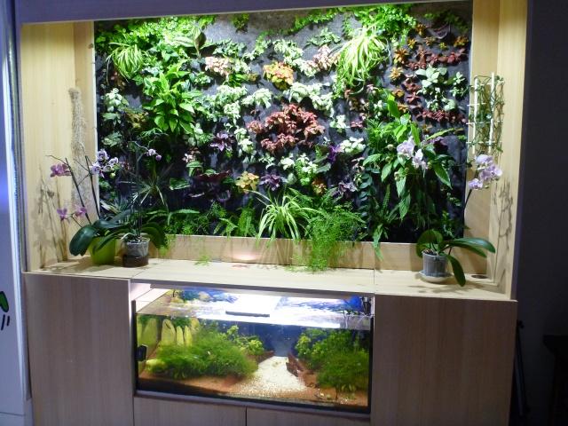 Le nouveau mur végétal de Olivetzou (projet fini à 98%) enfin les leds - Page 2 360464P1010801