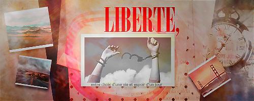 Sondage - concours de graphisme n°5 366206Libertgraphisme2
