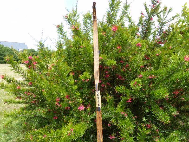 Chinook de Dan Toelke ( montana bows) 369496P1080346