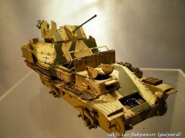 sd.kfz 140 flakpanzer (gépard) maquette Tristar 1/35 377273IMGP3197