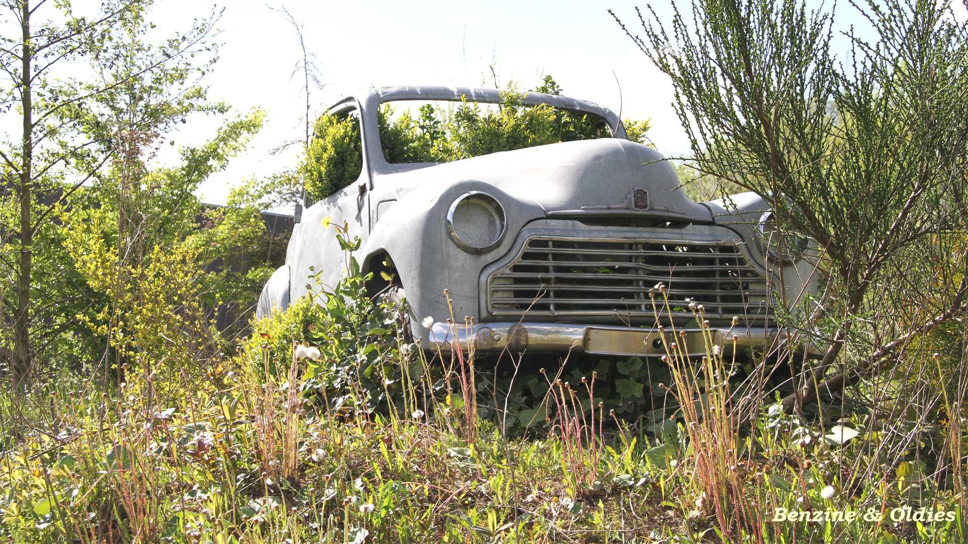 une Simca 6 carrosserie aluminium oubliée dans la nature - Simca6 380788simca6street26w19201080