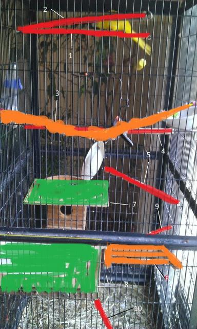 Grand besoin de conseils pour aménagement de la cage :) 386287WP20140603007