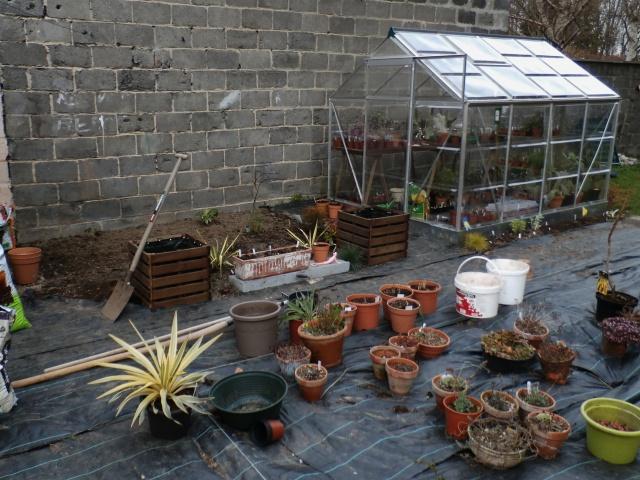 Phyllo - nouveau jardin 388258P3160016