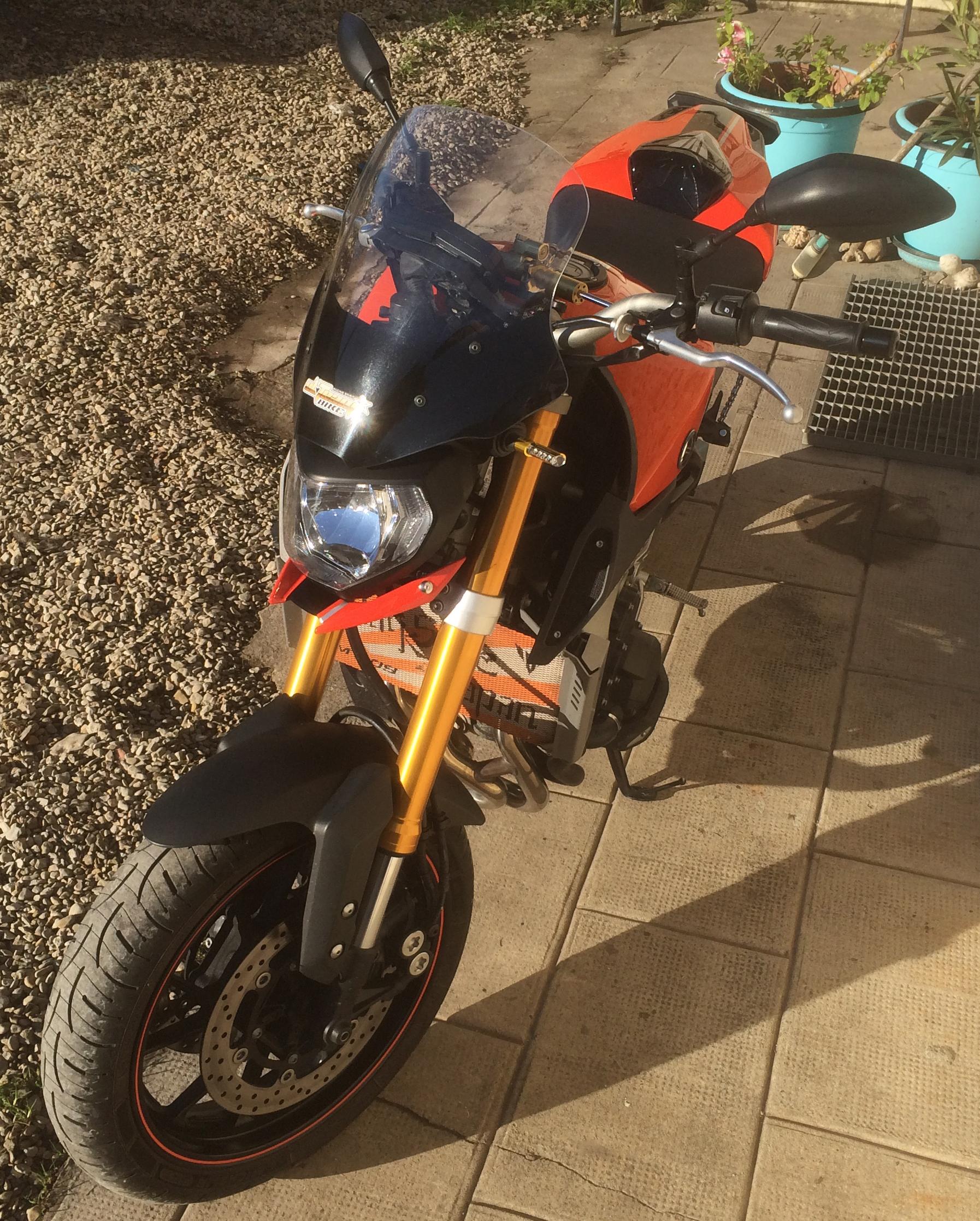 Orange Blazing 394814IMG27161