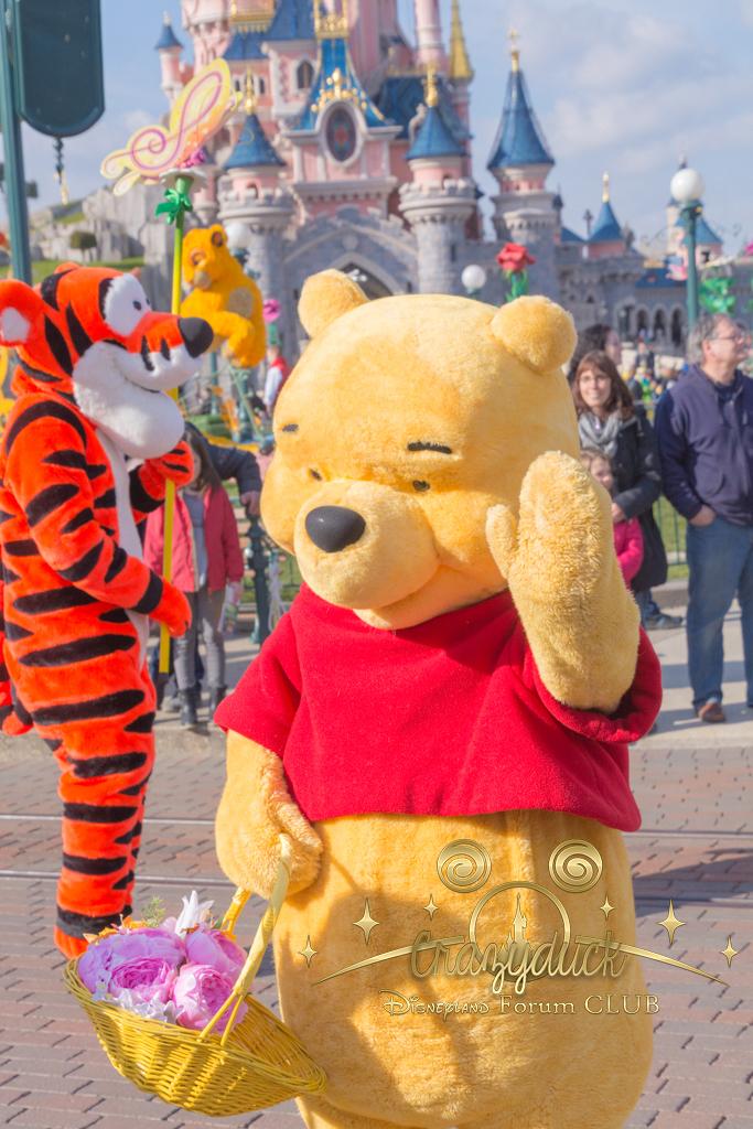Festival du Printemps du 1er mars au 31 mai 2015 - Disneyland Park  - Page 10 394827dfc35