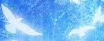~ ♛ ~ Destiny's  Prophecy ~ ♛ ~ 396175Hey