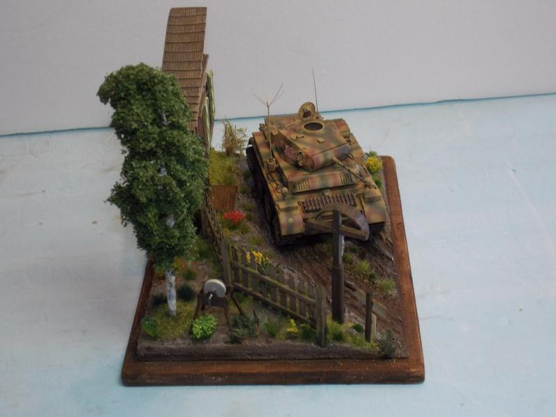 Un Lynx quelque part sur le front est 1944 - char Luchs ASUKA deco BLACKDOG 1/35 - Page 3 401699DSCN5125