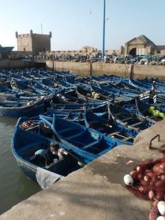 Essaouira.... 40198920120816192535