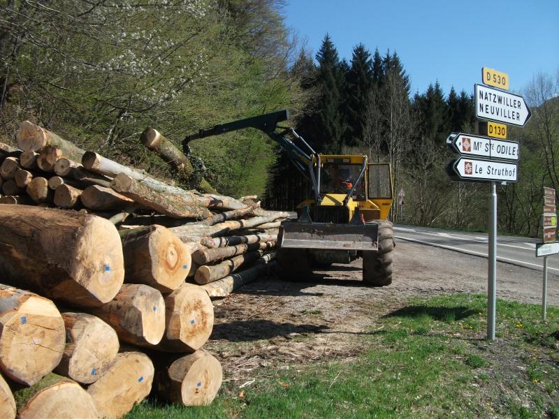 Du débardage dans les Vosges, à Hauteur de Schirmeck 403568008