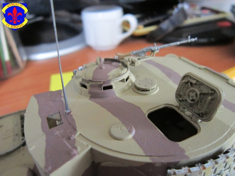 SD.KFZ.181 Tigre I par Pascal 94 - Page 2 404853IMG1268L