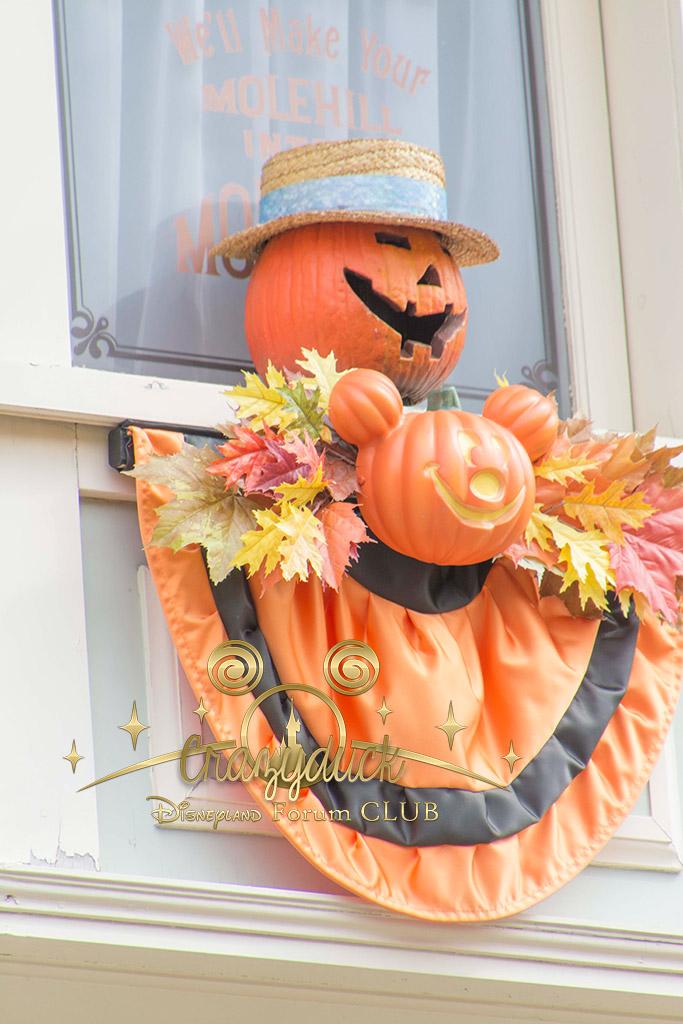 Halloween 2014 - Du 1er Octobre au 2 Novembre - Page 6 406395DSC0570