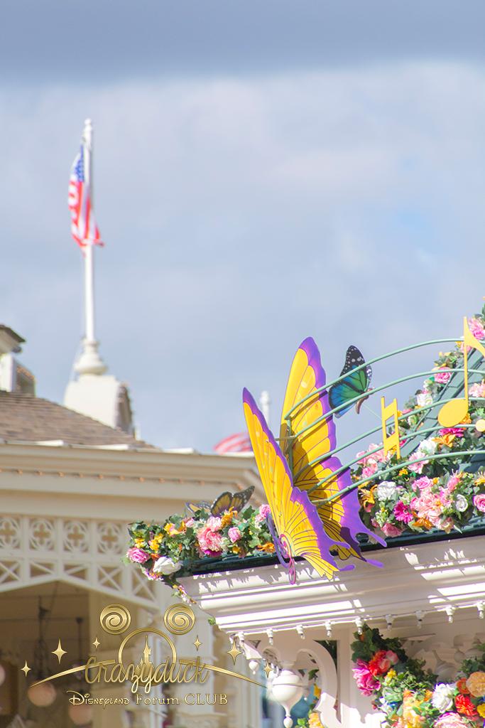 Festival du Printemps du 1er mars au 31 mai 2015 - Disneyland Park  - Page 8 40773627fevrier1523