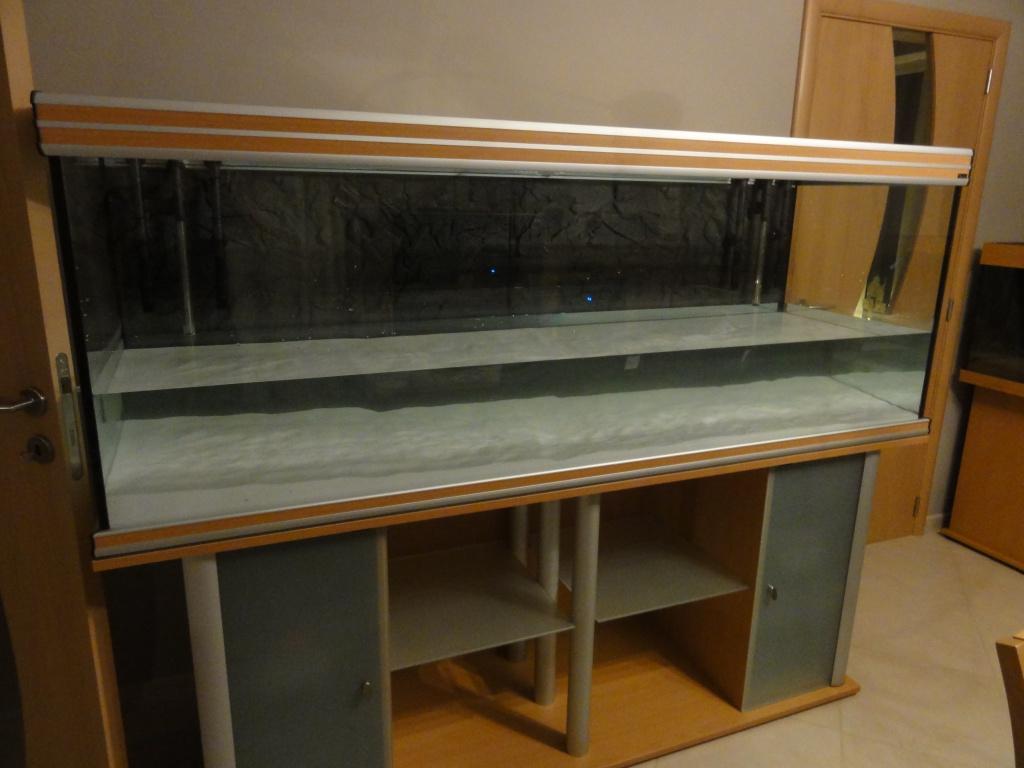 Projet Aquatlantis Evasion 200 x 60 x 75 - 830 litres - Page 6 414041DSC01239