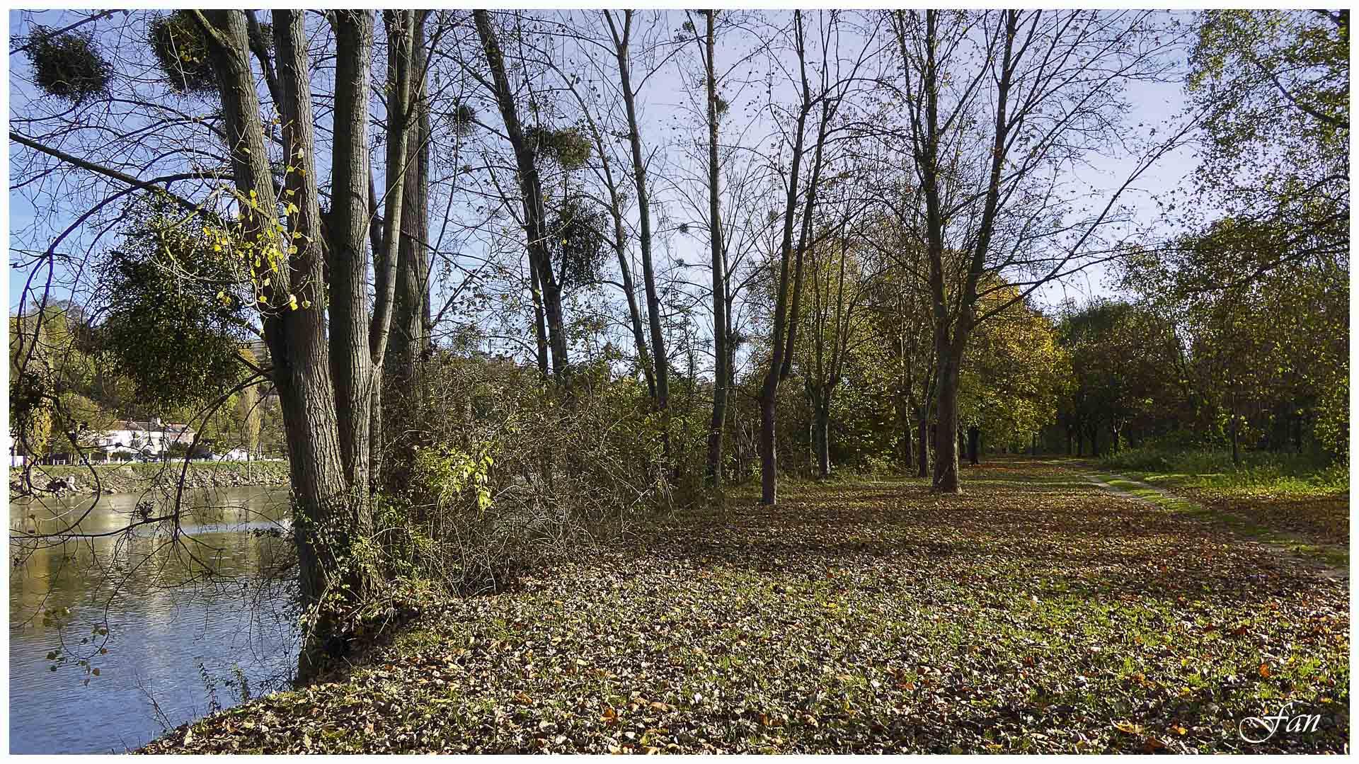 Paysage et nature des yvelines 416175P1010381bis