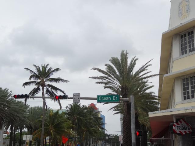 First Visit WDW/Miami/Key West halloween 2013 - Page 7 423772DSC03866