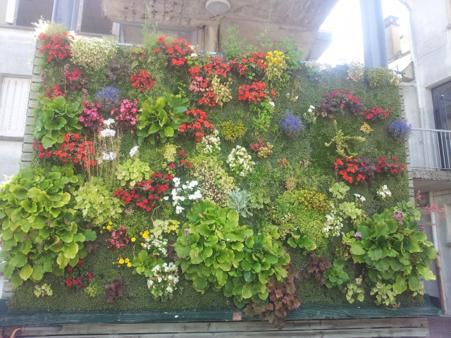 mur vegetal 42379420150706112536
