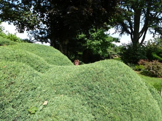 (26) Jardin Zen d'Erik Borja - Beaumont Monteux 424554P1020138