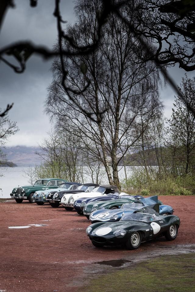 Jaguar Heritage Aux Milles Miglia 2015 Avec Des Modeles D'exception 429905JagMMDriverLineupImage30041502