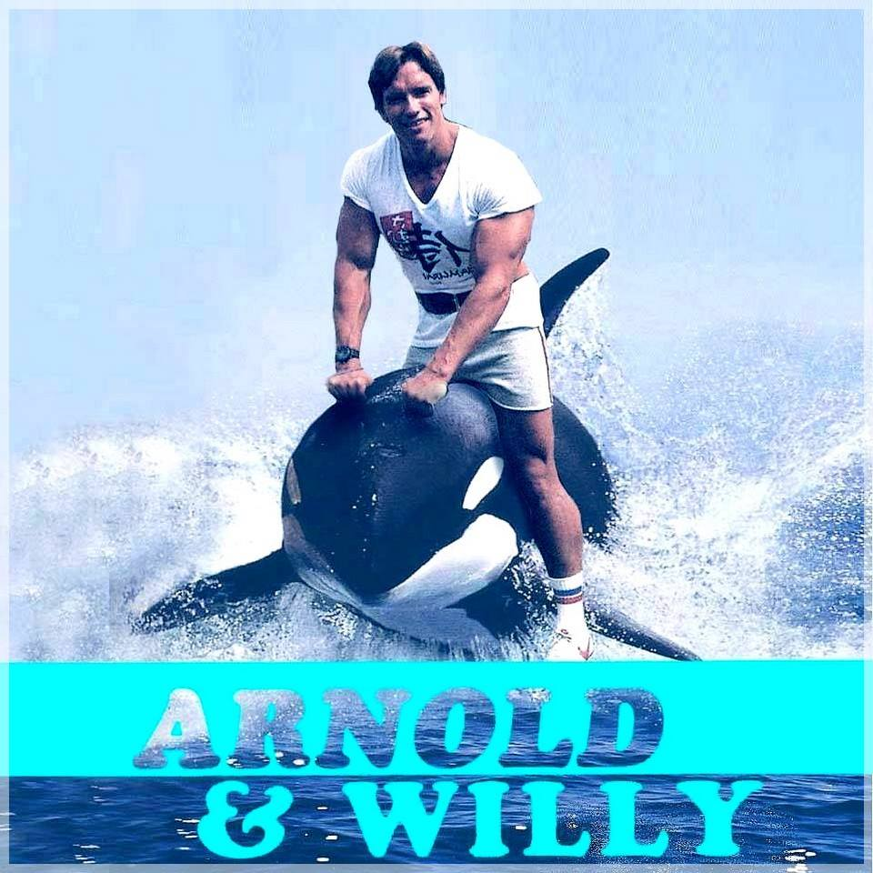 HUMOUR - blagues 433122Arnoldetwilly