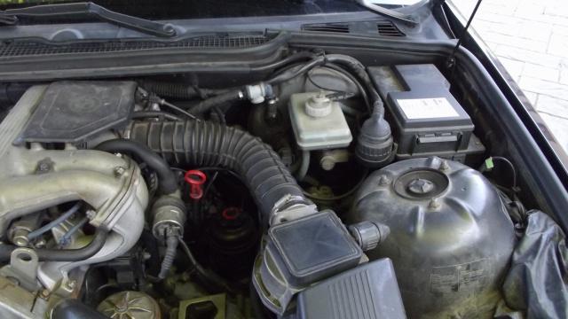 [BMW 316 i E36] Réparation d'une fuite d'essence moteur 4347383Vuemoteur2