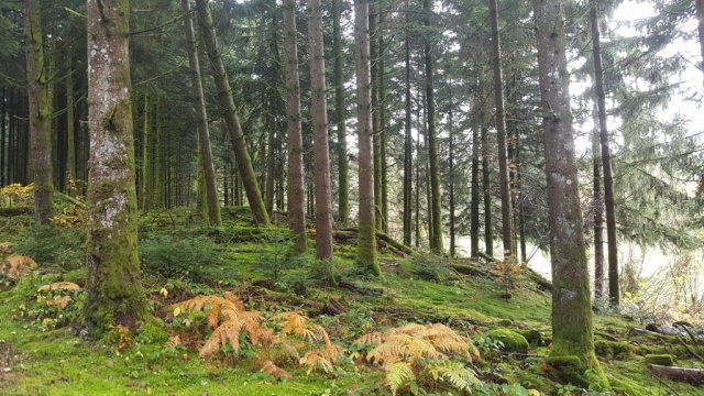 Kamigaz 2016 :   week end Vosges à skis ! 435154selectionkam163