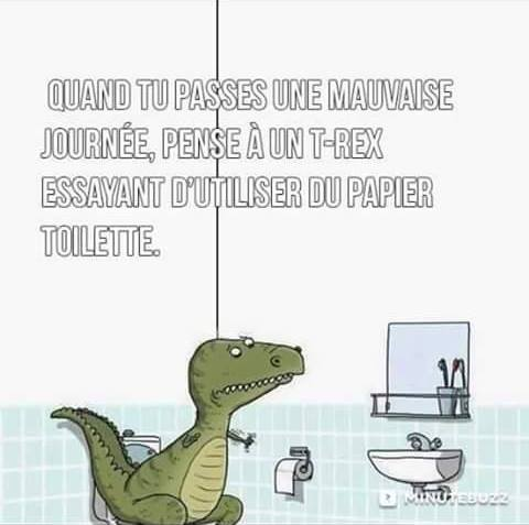 HUMOUR - blagues - Page 12 437284Trex