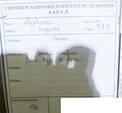 exposition d'aviculture Foire ST MATTHIEU 27 et 28 Septembre 2014 - Page 3 438628P1150847