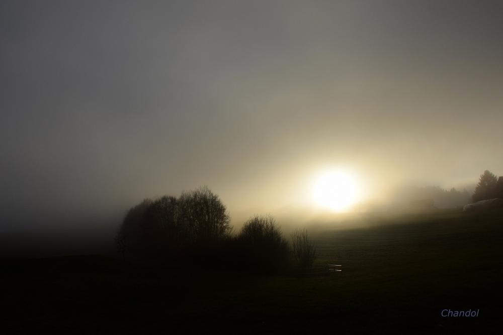Brouillard 442656DSC0468003