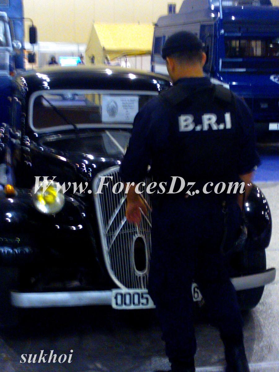 صور    B.R.I فرقة البحث والتدخل للشرطة الجزائرية  - صفحة 2 445659WP000037