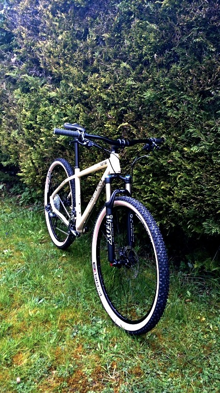 "[ JuLDeSiGn ] Commencal Supernormal 29"" 447058621089DSC01132"