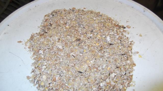 base mix pas cher 450233DSCF1190