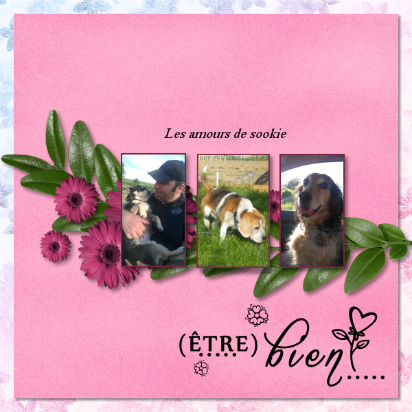 pages avril- mai- juin 2015 - Page 2 454463naboursookie
