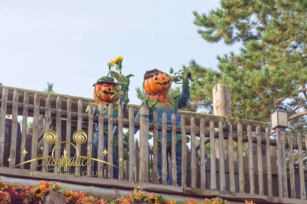 Halloween 2014 - Du 1er Octobre au 2 Novembre - Page 6 458006DSC0373