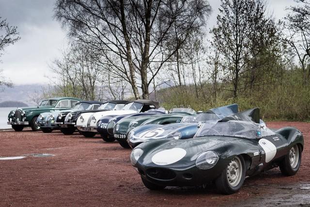 Jaguar Heritage Aux Milles Miglia 2015 Avec Des Modeles D'exception 458926JaguarMMLineupImage12051501