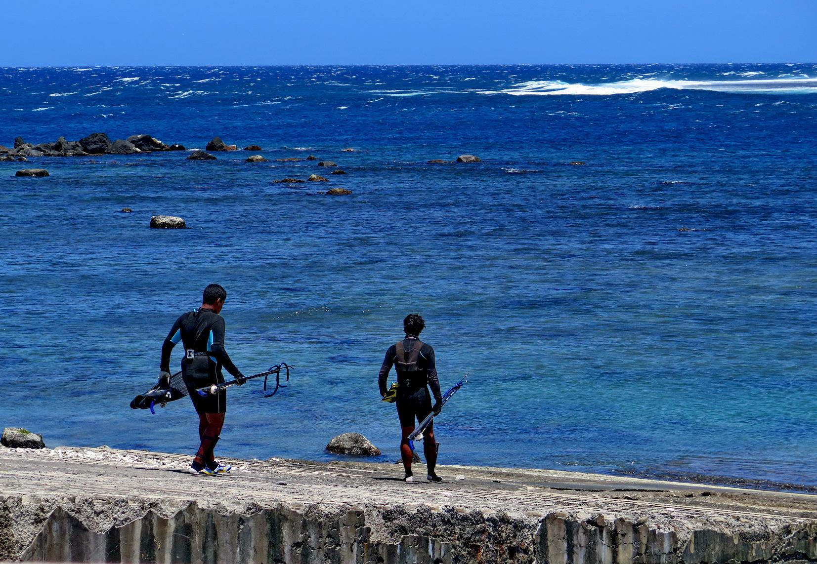 [Vie des ports] Les ports de la Réunion - Page 3 459863IMG0480