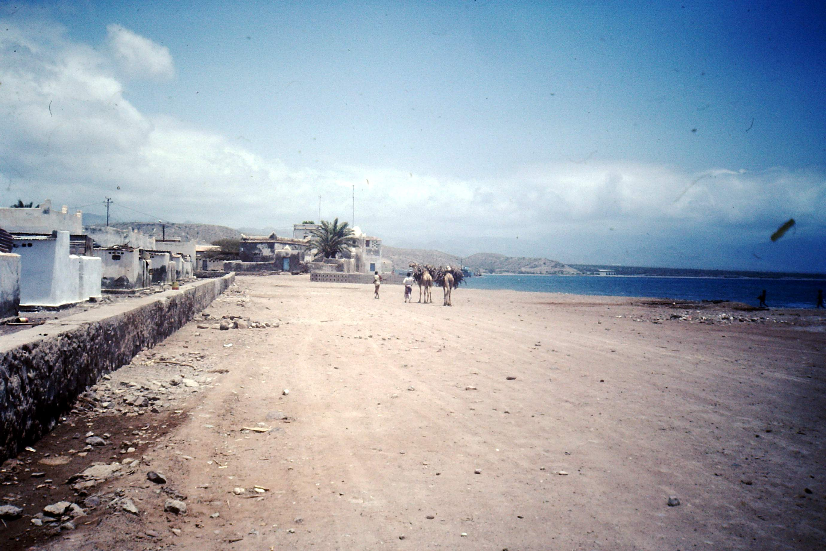 [Campagne] DJIBOUTI - TOME 1 - Page 4 463073PICT0016