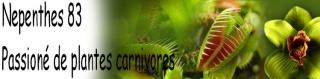 Je donne des sachets de graines  - Page 2 47410147pc