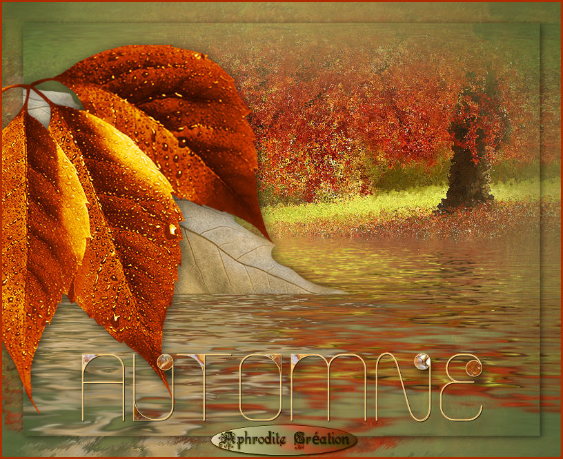 18-Cours Psp-Automne - Page 3 478273automnefinis