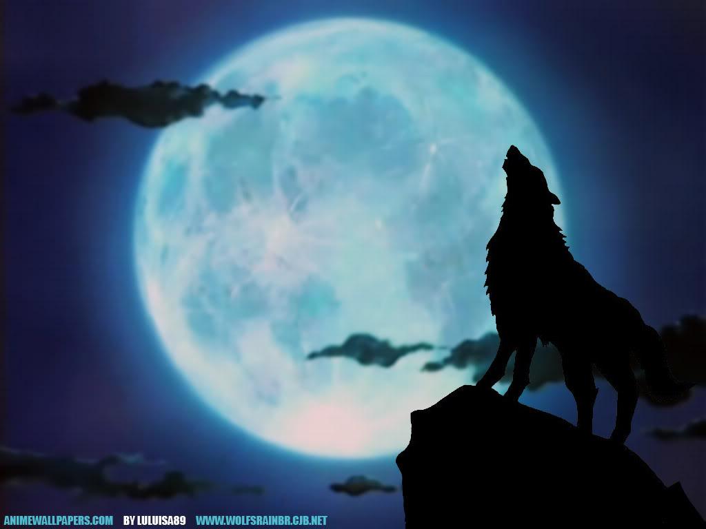 Votre fond d'écran du moment - Page 10 478639howlingwolfwallpaper
