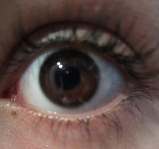 vos yeux! ( attention âmes sensibles: oeil en gros plan ^^) - Page 12 481890IMG0119