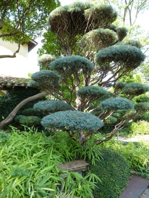 (26) Jardin Zen d'Erik Borja - Beaumont Monteux 488001tuxpicom1374166879
