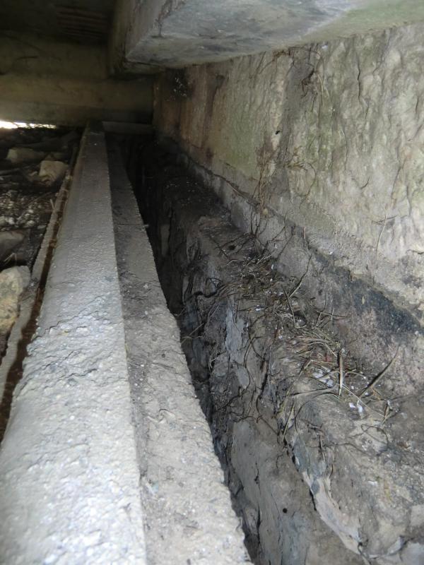 bunker 493986CIMG1729