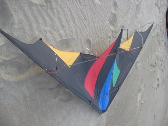 cerf-volant acrobatique 2 lignes de chez HQ  50 euros  502174IMG5170