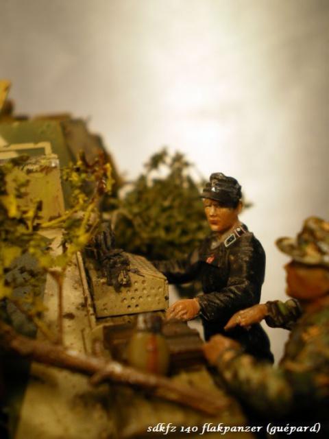 sd.kfz 140 flakpanzer (gépard) maquette Tristar 1/35 - Page 3 506551IMGP3250