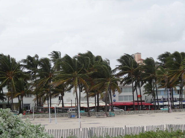 First Visit WDW/Miami/Key West halloween 2013 - Page 7 507008DSC03862