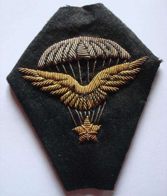 Chocs parachutés , libération Pont de Claix , Grenoble Août 1944 508898Martin