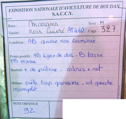 exposition d'aviculture Foire ST MATTHIEU 27 et 28 Septembre 2014 - Page 3 509896P1150658